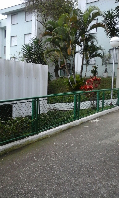 Vila Clara