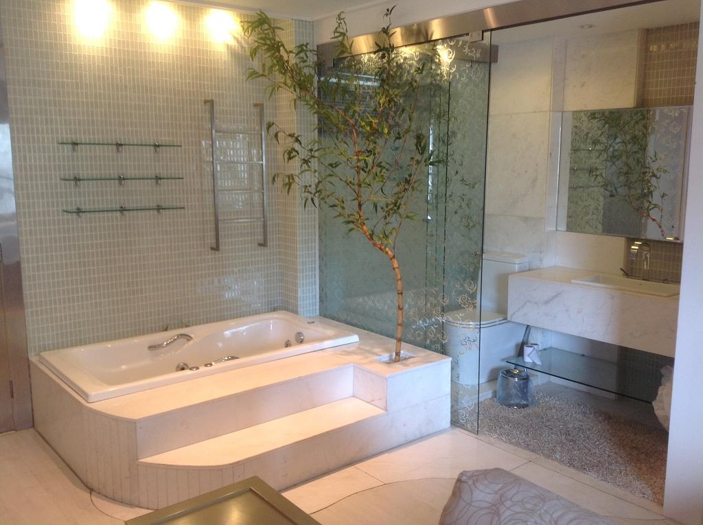 Banheira e Banheiro