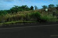 Pinheirinho