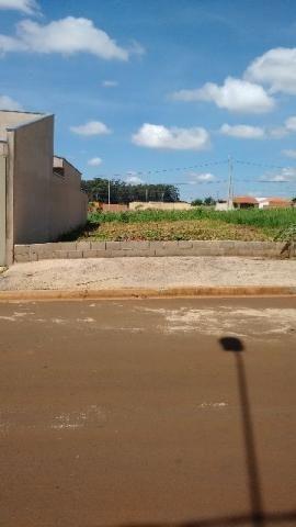 Parque das Oliveiras