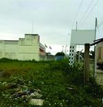 Área Darly Santos