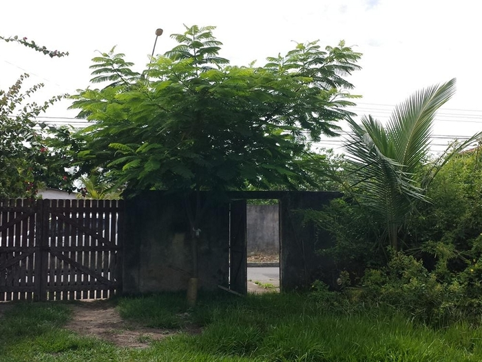 Área em Jacaraípe