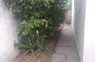 Jardim Paineiras
