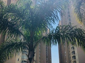 Ver mais detalhes de Apartamento com 2 Dormitórios  em Vila Santo Antônio - Guarulhos/SP
