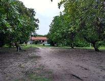 PANAQUATIRA