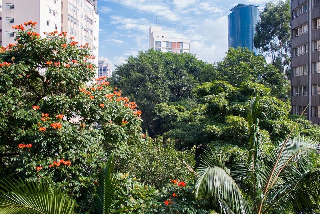 Europa - Apto 2 Dorm, Jardim Paulista, São Paulo (3380)