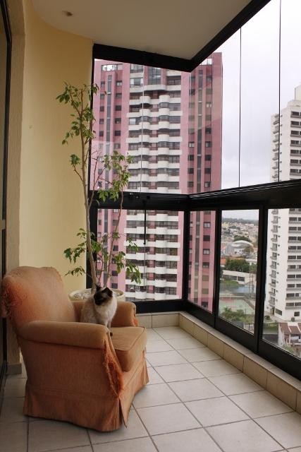 Ed. Ogoporã - Apto 4 Dorm, Bosque da Saúde, São Paulo (3474) - Foto 13