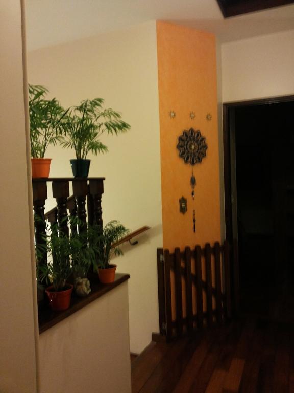 Casa 3 Dorm, Vila Arriete, São Paulo (3821) - Foto 5