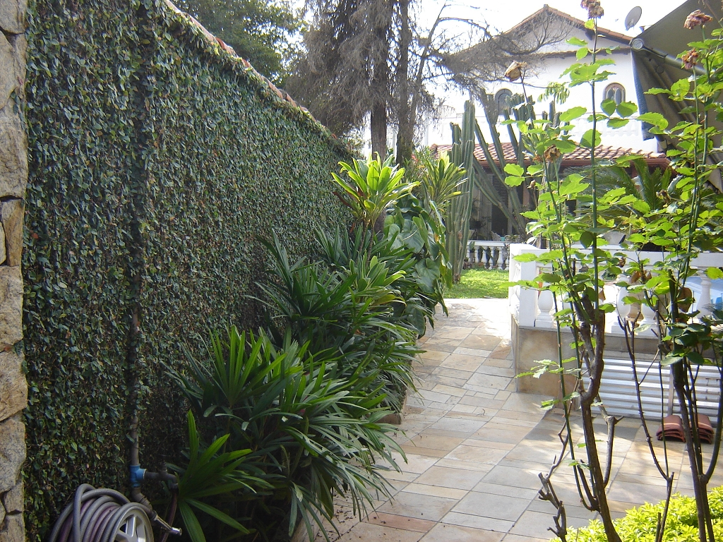 Casa 3 Dorm, Jardim Taquaral, São Paulo (4056) - Foto 14