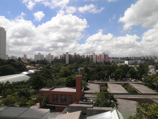 NovaVida Imóveis - Apto 3 Dorm, Jardim Marajoara - Foto 4