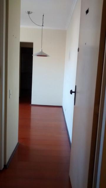 Flavia - Apto 2 Dorm, Vila das Belezas, São Paulo (4403) - Foto 9