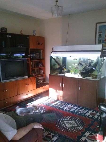 Casa 3 Dorm, Pedreira, São Paulo (4370) - Foto 12