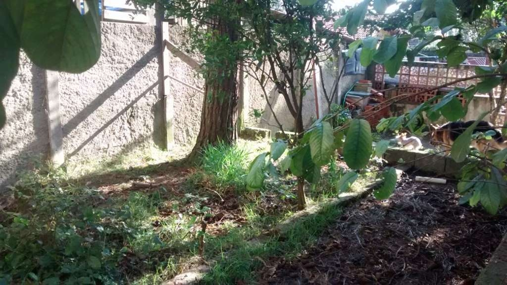 Casa 3 Dorm, Pedreira, São Paulo (4370) - Foto 39
