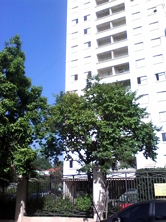 Portal Marajoara - Apto 2 Dorm, Campo Grande, São Paulo (4522) - Foto 14