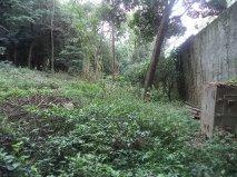NovaVida Imóveis - Terreno, Chacara Flora (4547) - Foto 4