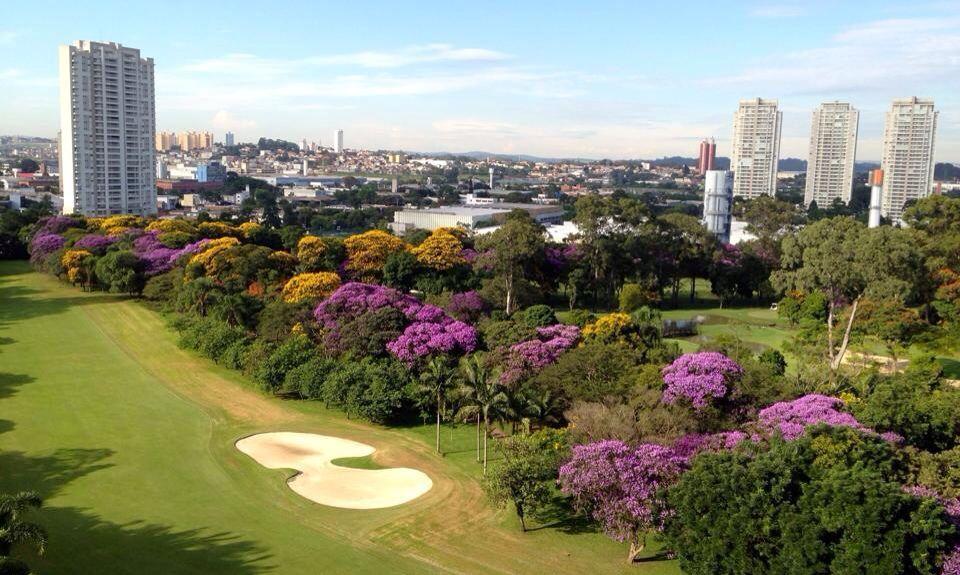Iepê Golf Condominium - Apto 3 Dorm, Jardim Marajoara, São Paulo
