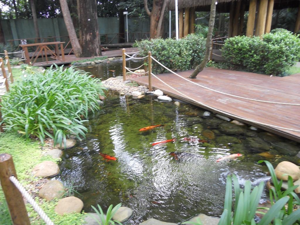 Iepê Golf Condominium - Apto 3 Dorm, Jd. Marajoara, São Paulo (4960) - Foto 21