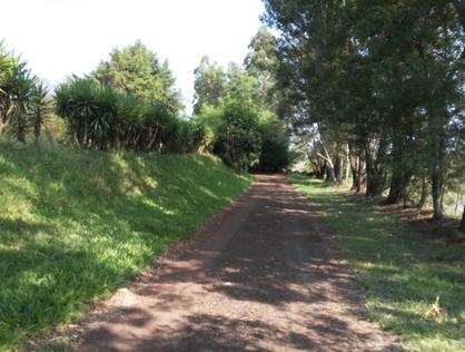 Ver mais detalhes de Rural com 2 Dormitórios  em (Sem Bairro) - Pejuçara/RS