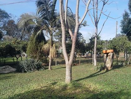 Ver mais detalhes de Rural com 0 Dormitórios  em ABEGAY - Cruz Alta/RS