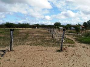 Ver mais detalhes de Rural com 3 Dormitórios  em Boa Vista - Acari/RN