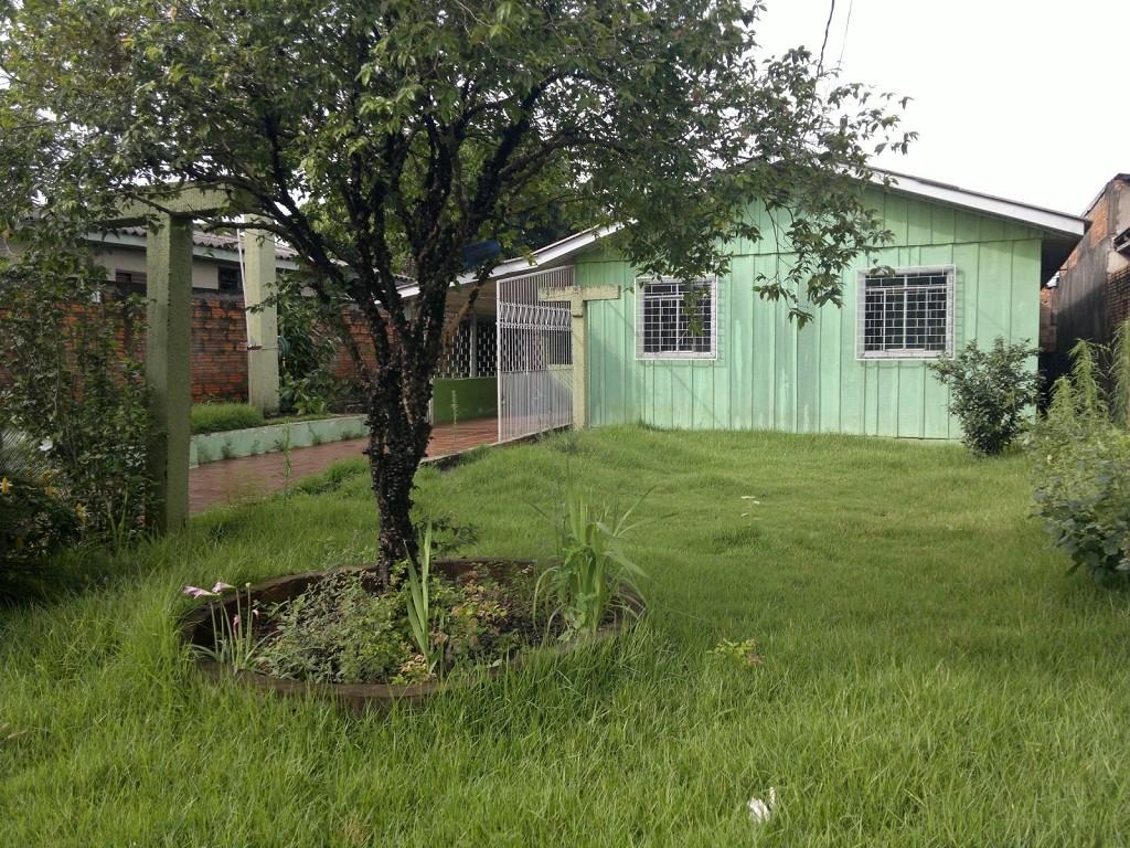 Amplo terreno com árvores frutíferas