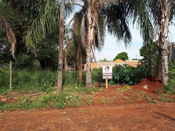 Jardim Jasmim